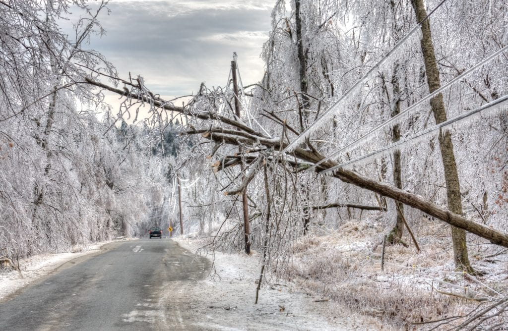 """Why Do DisastersKeep """"Surprising"""" Us?A Resilience Culture Would Aid Preparation"""