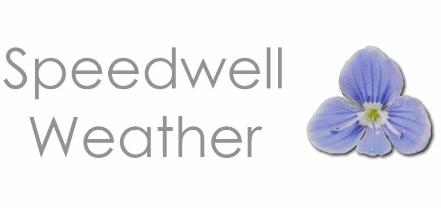 Speedwell formalises global parametric tropical cyclone settlements